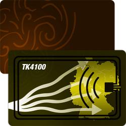 RFID Chipkarte mit TK4100 Chip