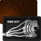 RFID Chipkarte mit TEMIC 5577 Chip